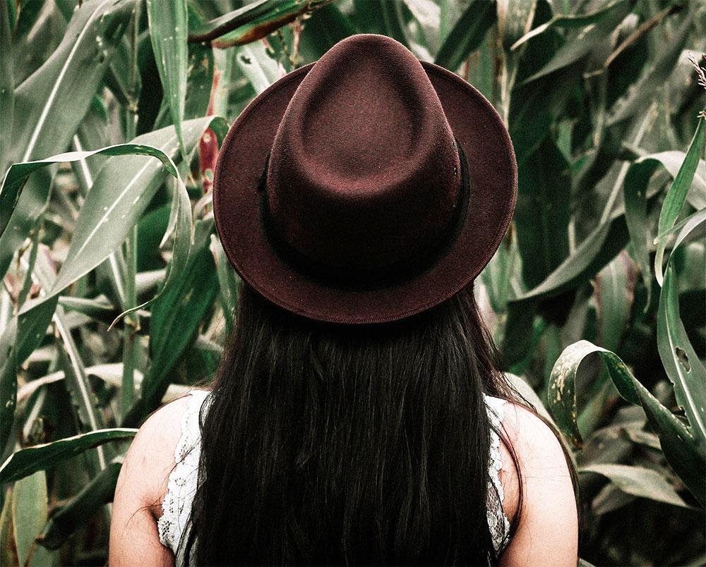 коричневая фетровая шляпа